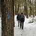 Y12 D059 Winter Hike