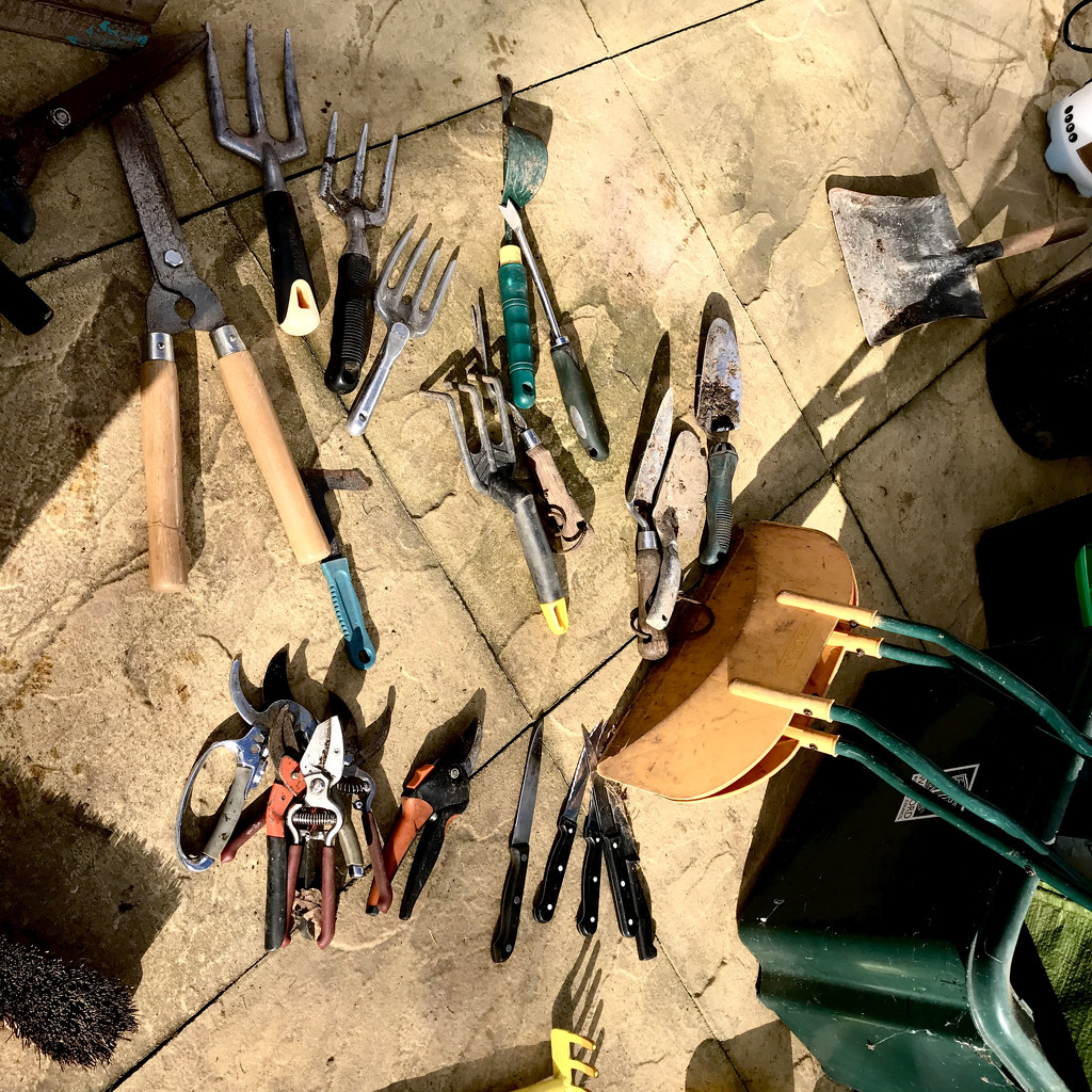 Tools of the shed by daffodill