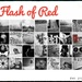 Flash of Red - February 2021