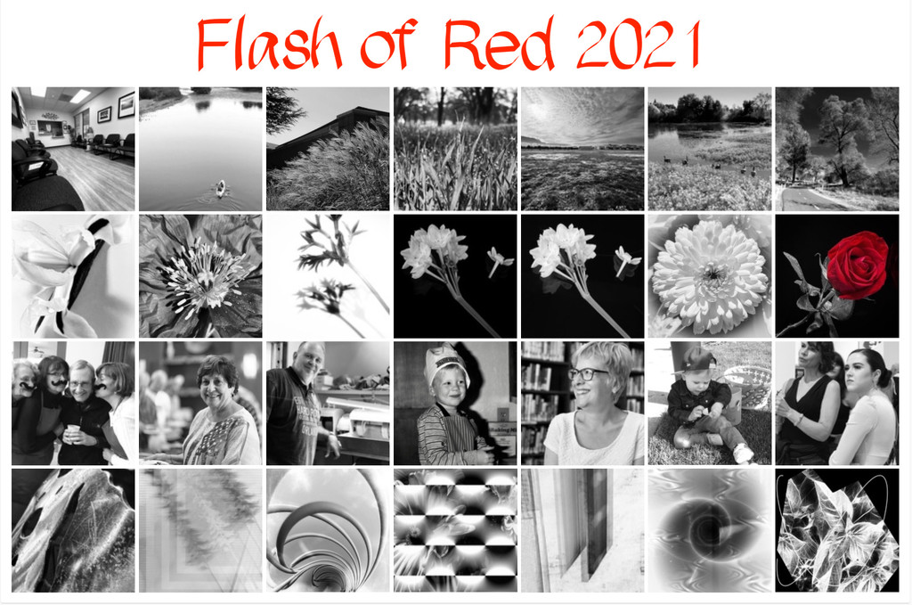 Flash of Red 2021 by shutterbug49