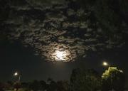 1st Mar 2021 - Moon