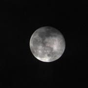 27th Feb 2021 - The Moon...Plain & Simple!