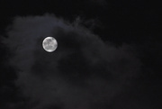 27th Feb 2021 - Moon Amidst The Clouds