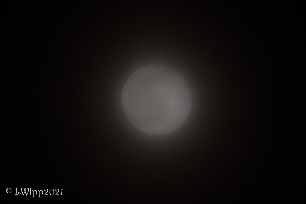 The Hidden Moon  by lesip