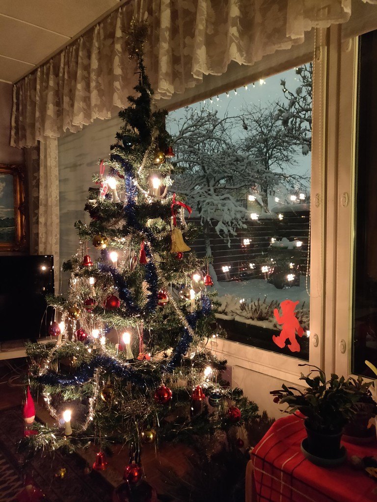 Christmas tree IMG_20210111_055730 by annelis