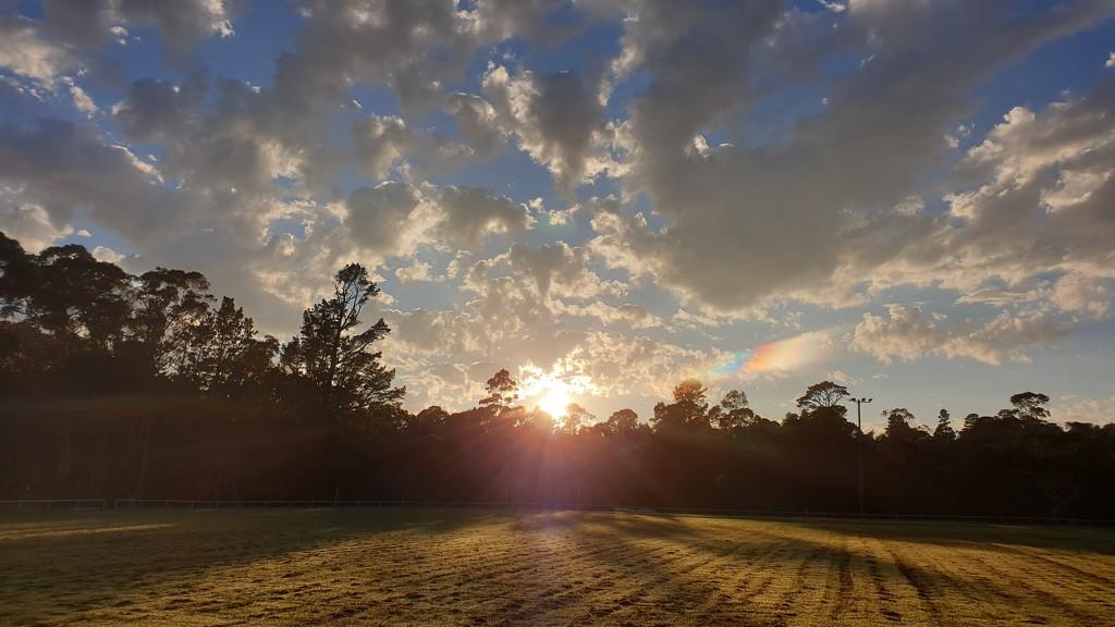 Good morning sunshine by julianneovie