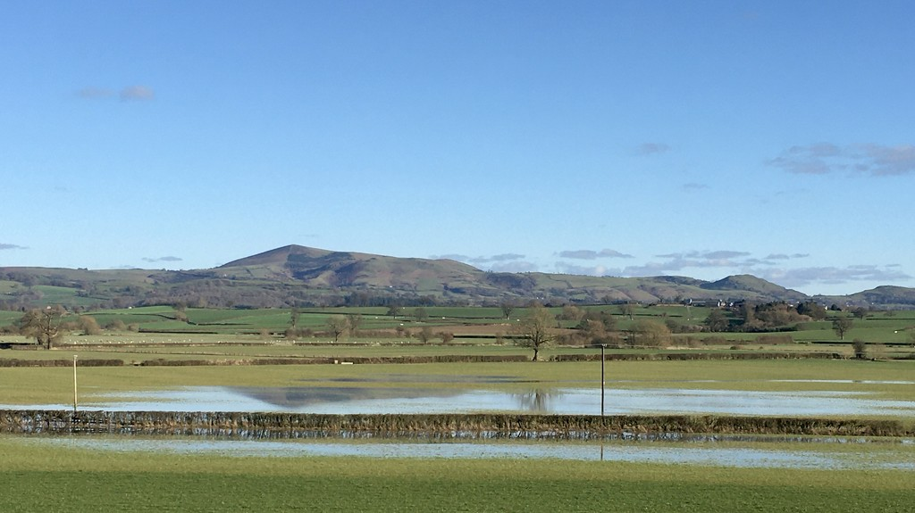 Corndon reflects by ruthmouch