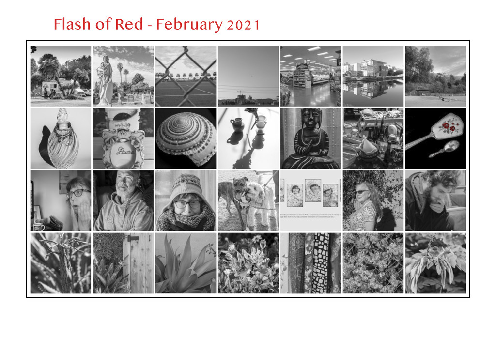 Flash of Red February 2021 by mrslaloggie