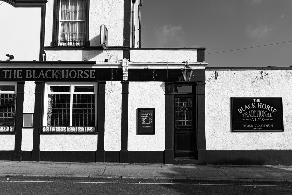 The Black Horse by peadar