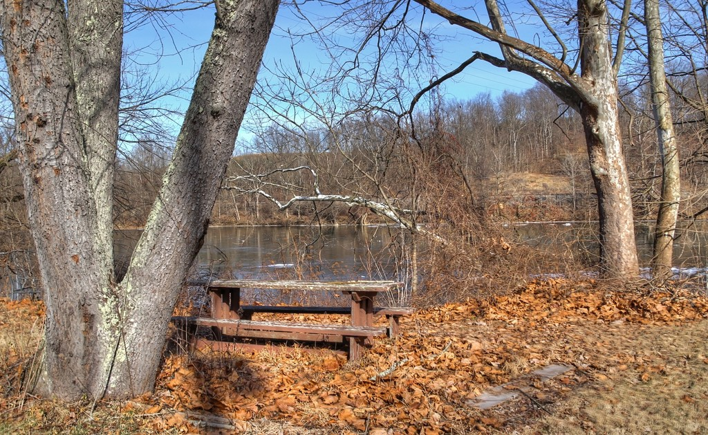 Picnic table by the lake by mittens