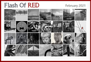 1st Mar 2021 - Flash Of Red 2021