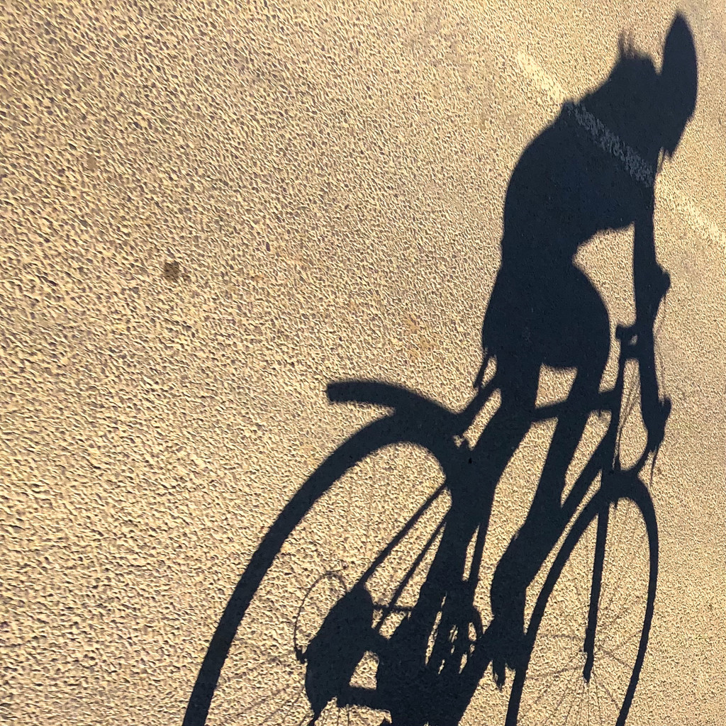 Shadow Cycling  by gbeauchamp