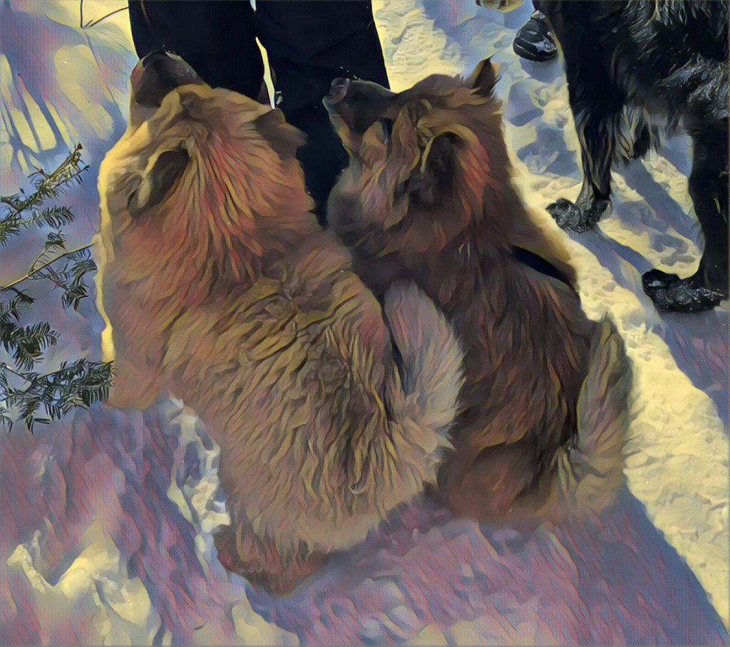 Teddy and Bear  by radiogirl