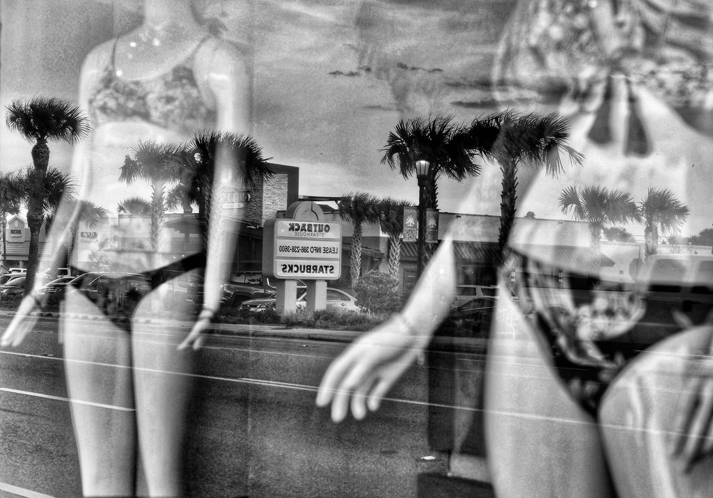 Summer's 'round the corner 🌴🌞 by joemuli