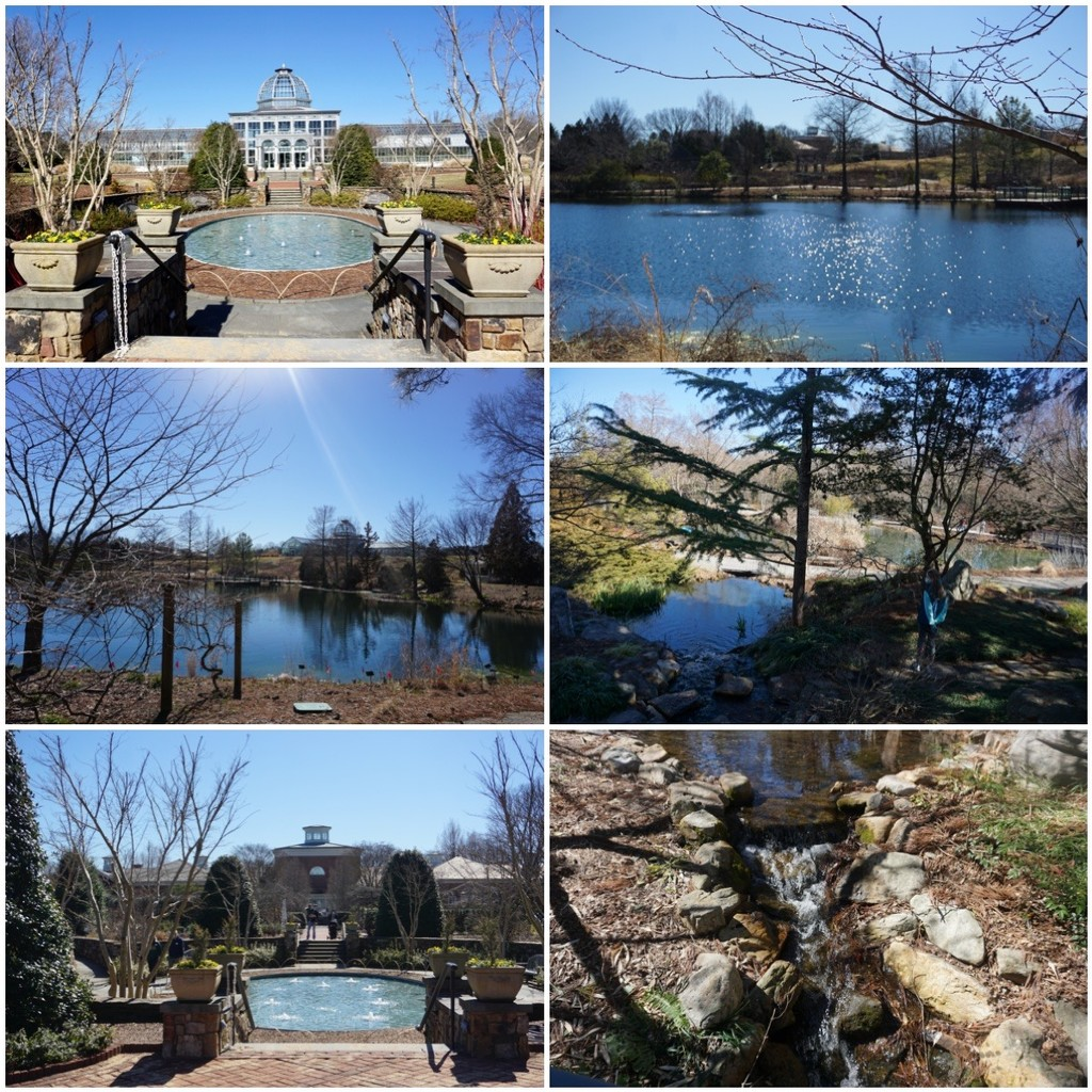 Water Features at Lewis Ginter by allie912
