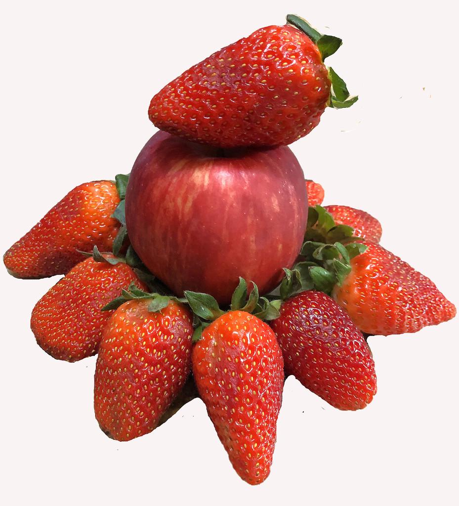 Red Fruit by homeschoolmom