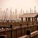 Mandarin Pier with Some Fog!