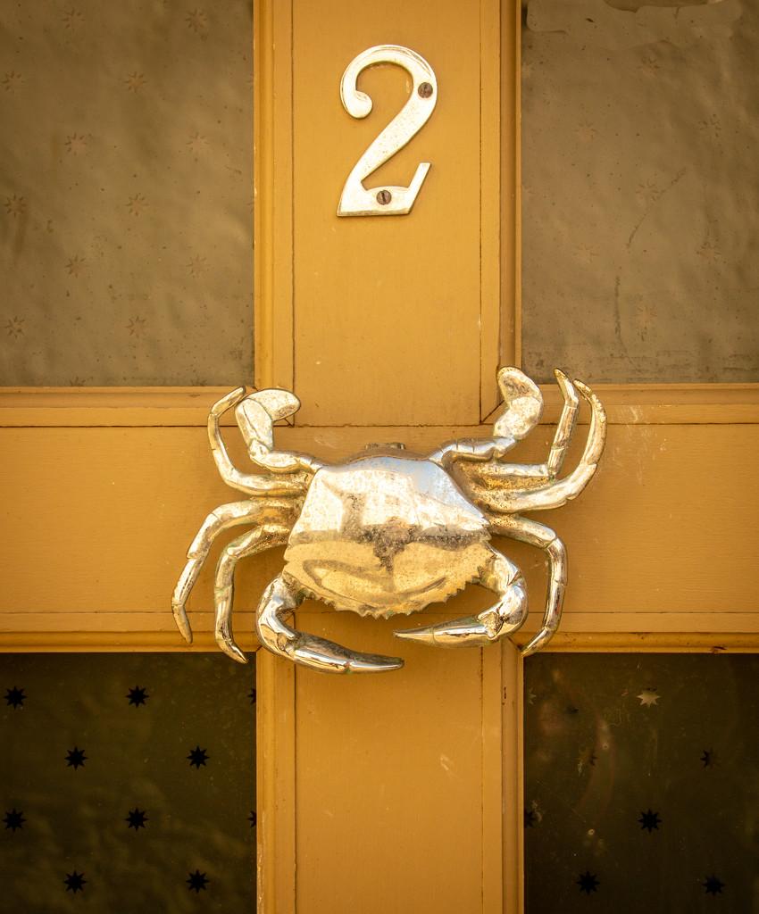 Crab by swillinbillyflynn