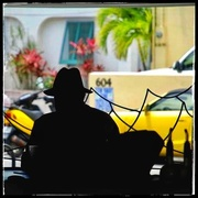 3rd Mar 2021 - The yellows of Key West