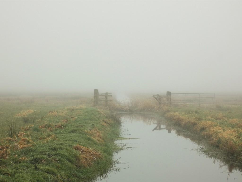Misty rhyne by julienne1