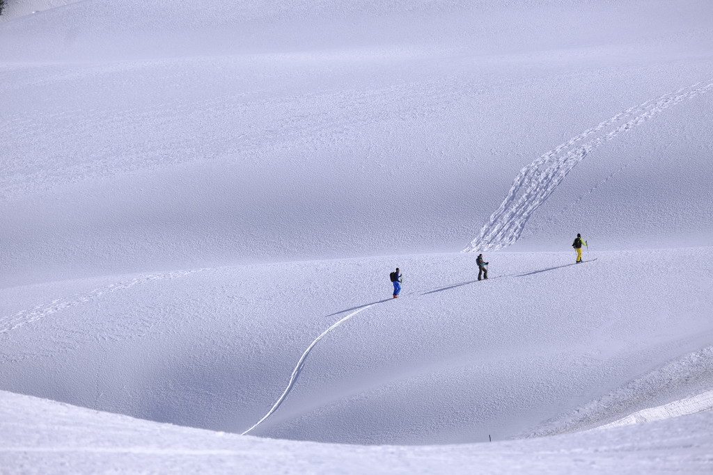 Skiing uphill  by caterina
