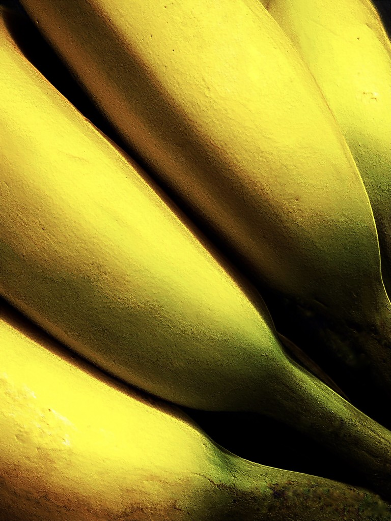 Bananas by njmom3