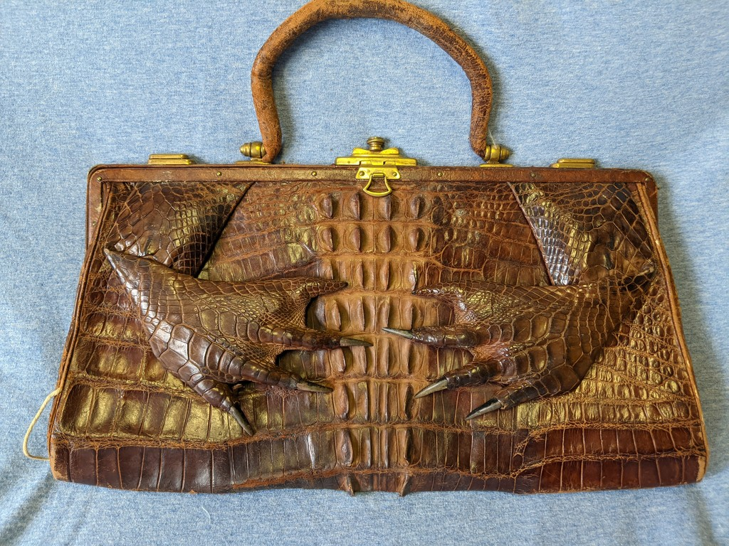 Alligator Bag by prairiesmoke
