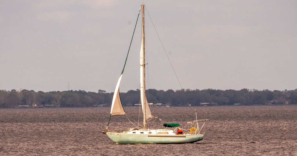Sailboat Crusing the River! by rickster549