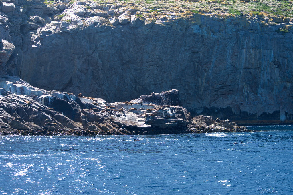 Schouten Island Cruise (31) by kgolab