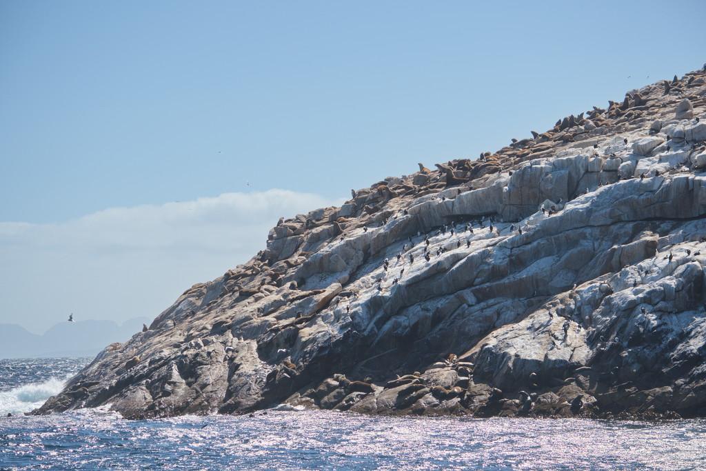 Schouten Island Cruise (32) by kgolab