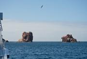 5th Mar 2021 - Schouten Island Cruise (33)