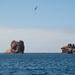 Schouten Island Cruise (33)
