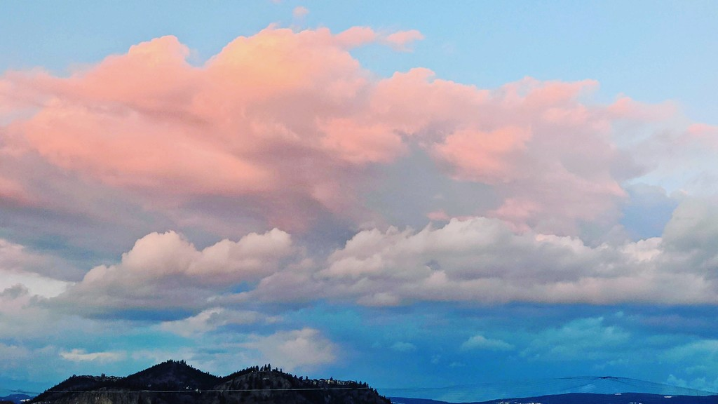 Pink Clouds by gq