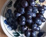 4th Mar 2021 - Gorgeous grapes.
