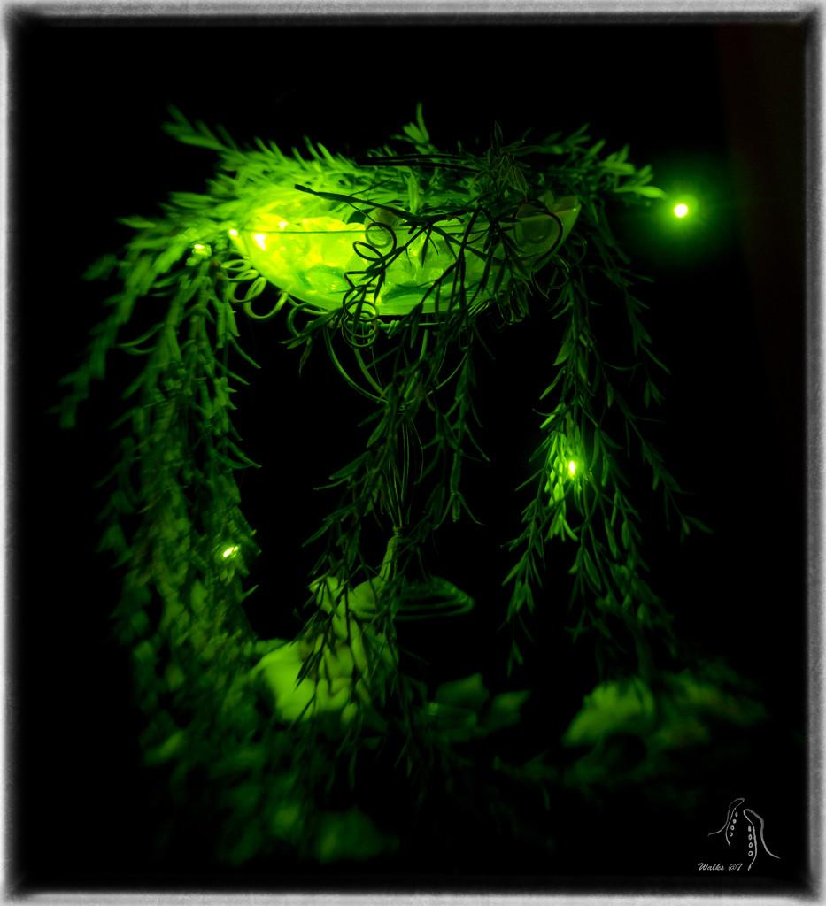 Firefly Glow by joysabin