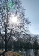28th Feb 2021 - Winter sunshine