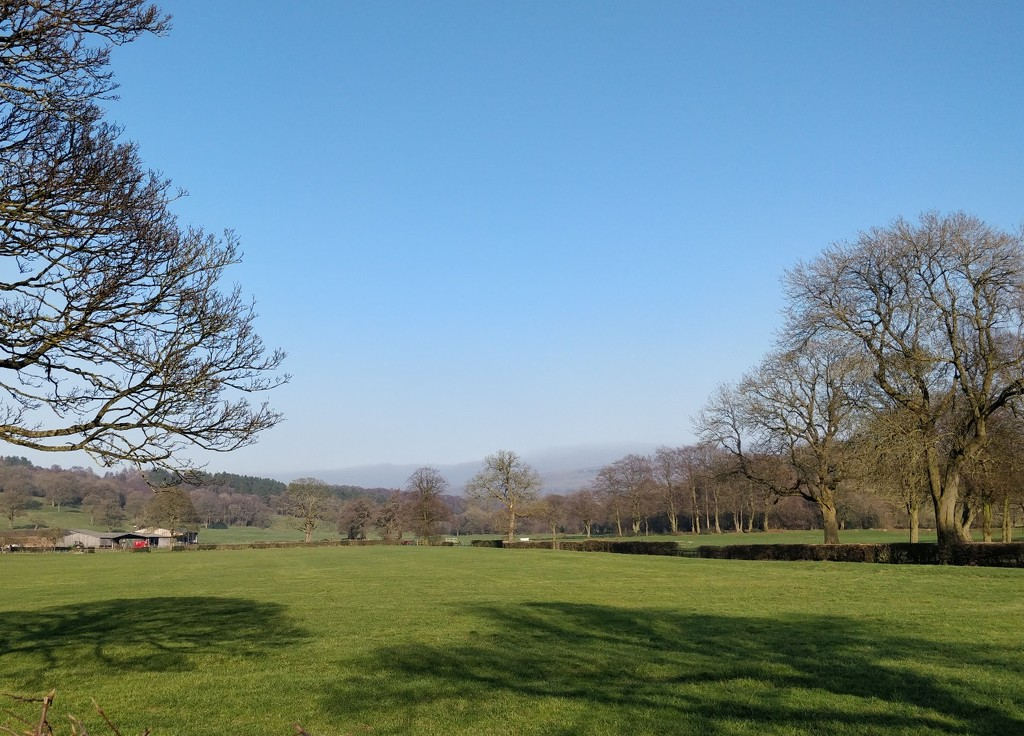 A view on my walk today by roachling