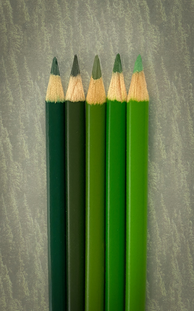 Shades of Green by sprphotos