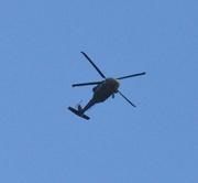 4th Mar 2021 - High flying bird.......................