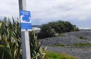 5th Mar 2021 - tsunami warning sign