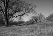 2nd Mar 2021 - Twin Mounds