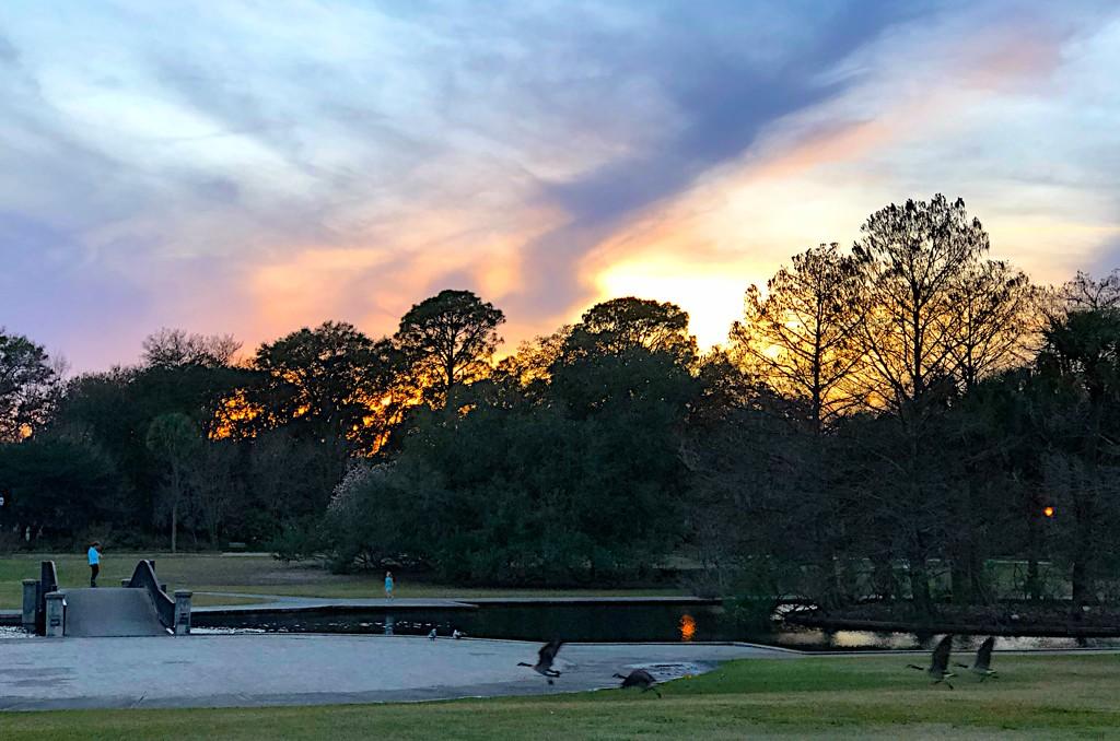 Sunset, Hampton Park by congaree