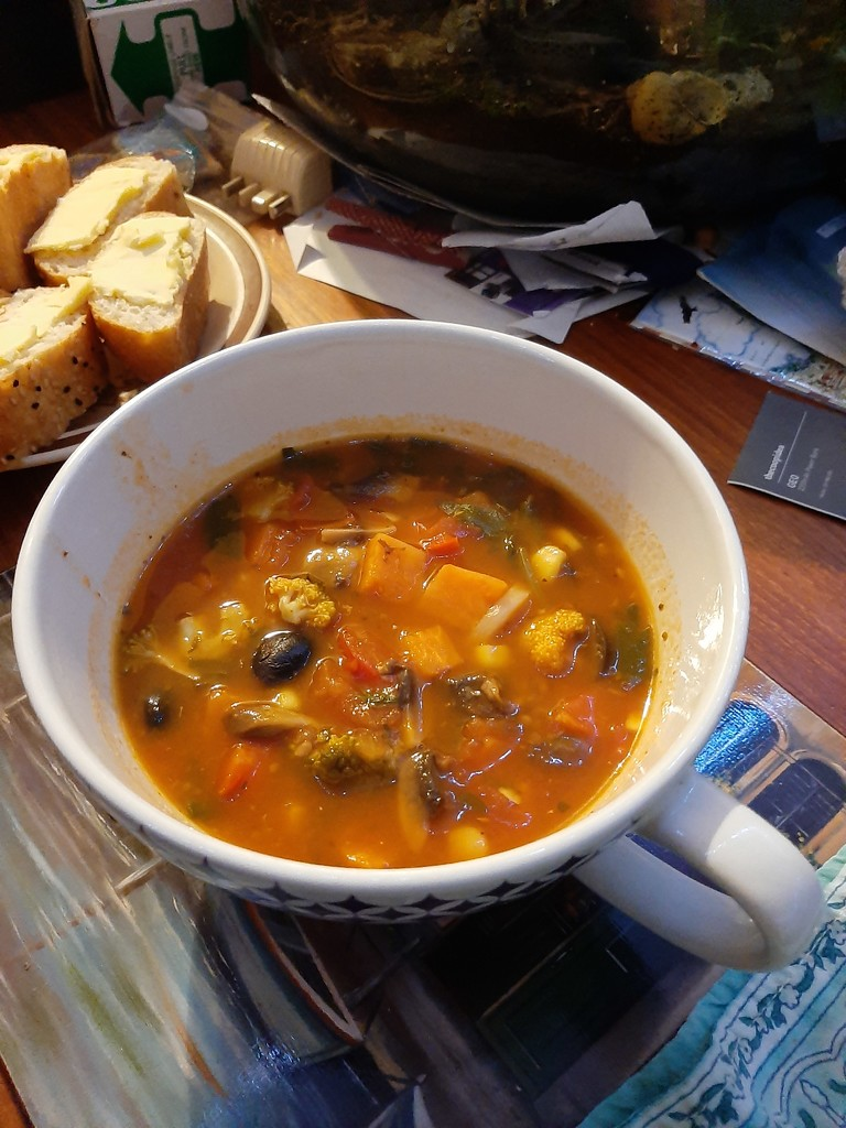Home Made Soup  by mozette