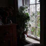 6th Mar 2021 - 6 The stone house Helen