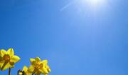 5th Mar 2021 - Blue sky
