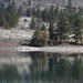 Flathead River Reflections