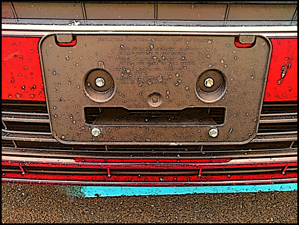 A Face on the Bumper by olivetreeann