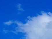 6th Mar 2021 - Sky Blue