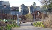 6th Mar 2021 - Edible Garden