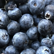 6th Mar 2021 - Blue berries